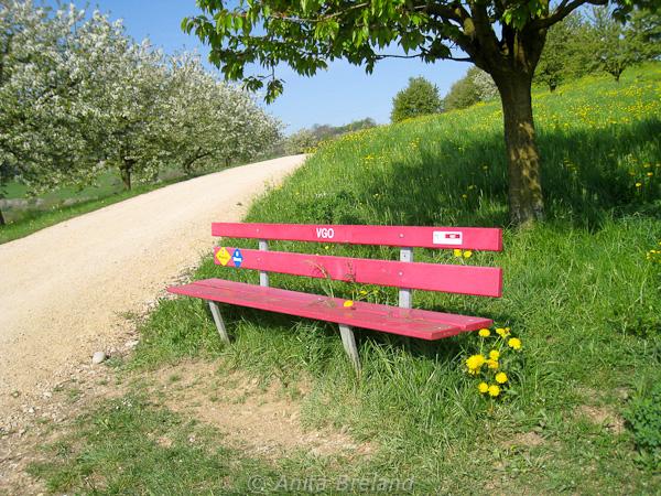 Spring bench