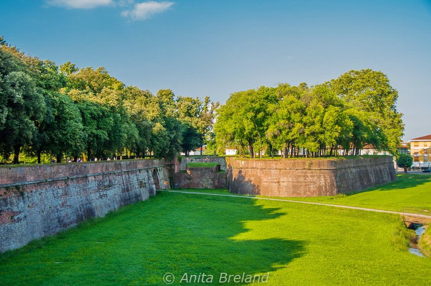 Medieval city wall, Lucca, Tuscany