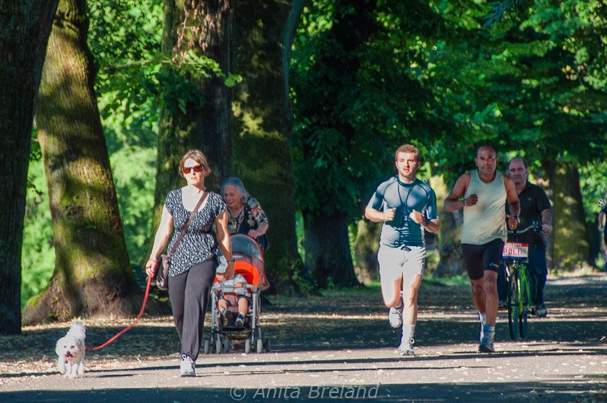 Summer pleasures in Lucca, Tuscany