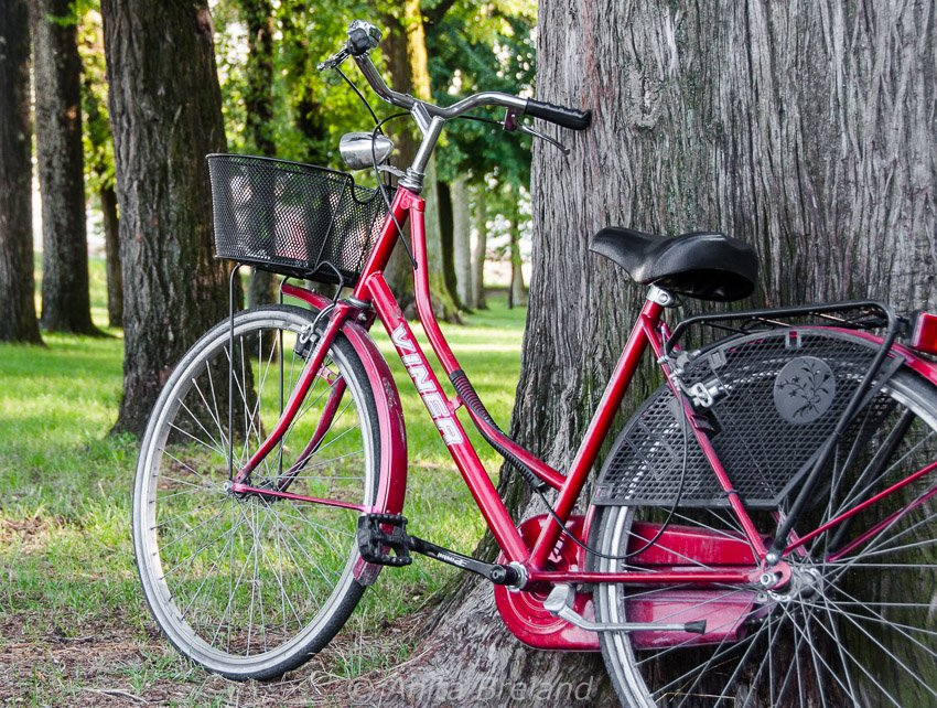 Summer cycling in Lucca, Tuscany
