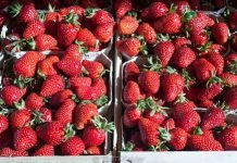 Strawberries in Mulhouse market
