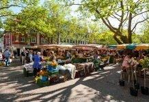 Lorrach market