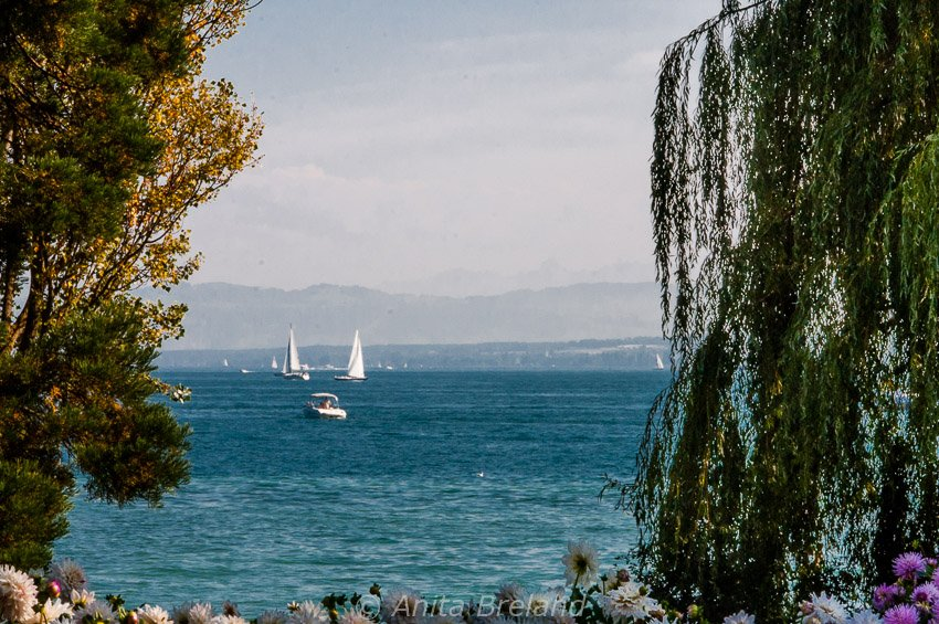 Sailboats on Lake Constance