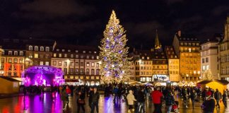 The Great Christmas Tree, place Kleber, Strasbourg