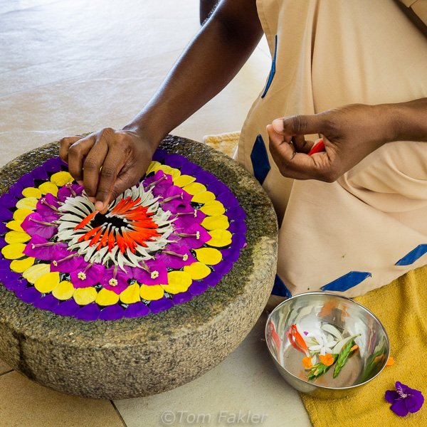 staff at the Ayurvedic Spa create a new water sculpture each day.
