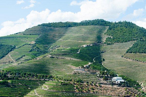 Douro landscape