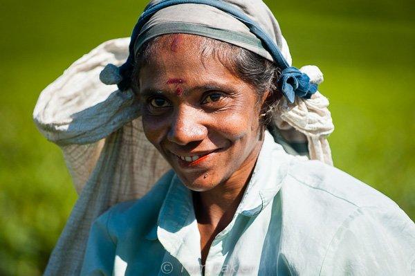 Lady tea picker smiling
