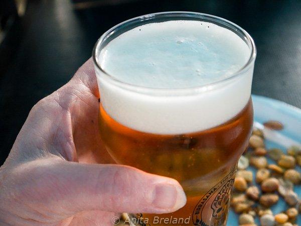 A glass of Vinya Hop