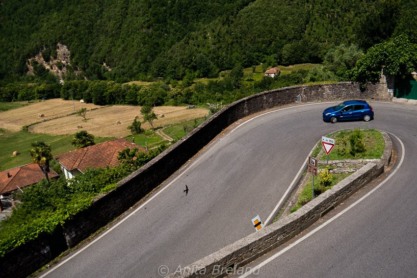 Italian road trip---be prepared for curves!