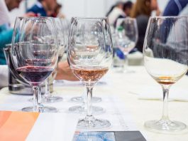 Wine master class at DWCC 2015