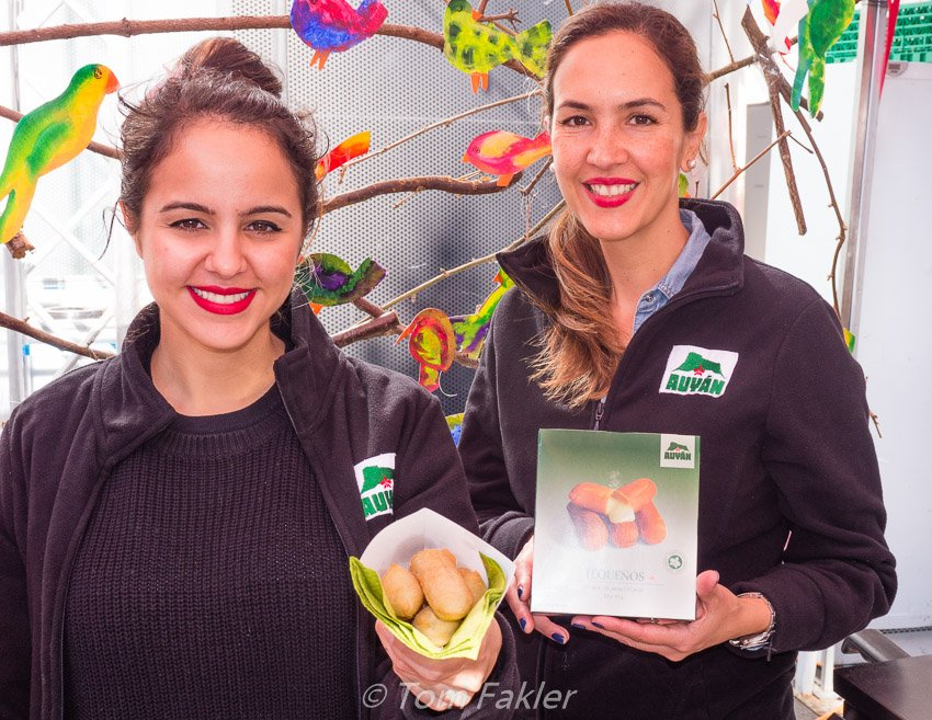 Auyán presents Venezuelan tequeños at Street Food Festival Basel