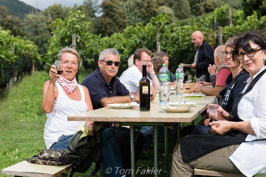 Celebrating the grape harvest