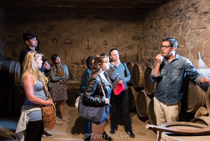 Learning from winemakers in Catalonia