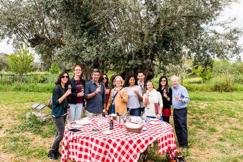 Sampling olives in Alentejo