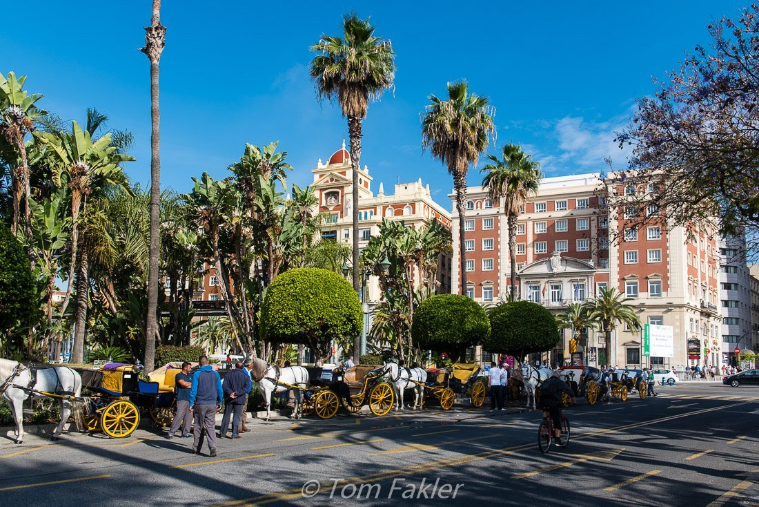 Horse-drawn carriages await visitors under blue skies and palm trees