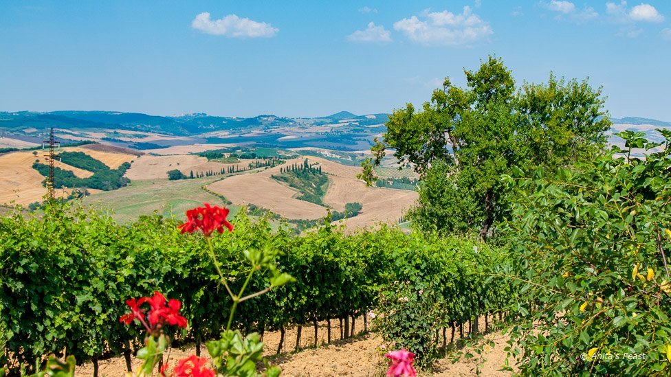 View of the Tuscan countruside