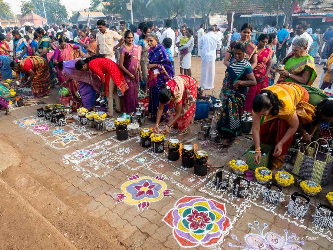 Colorful kolams for Ponga